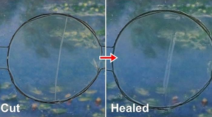 研究人员指物料能够自我修复。