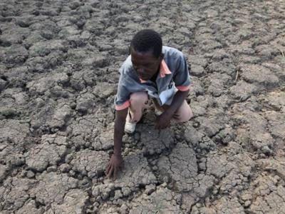 非洲今年或爆大饥荒 影响逾3700万人