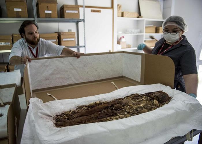 研究人员小心翼翼打开装有木乃伊的箱子。