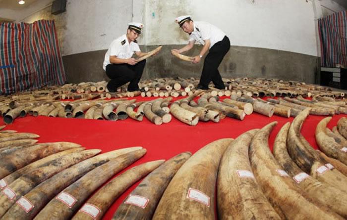 中国承诺于2017年底前「停止象牙制品的国内商业性交易」