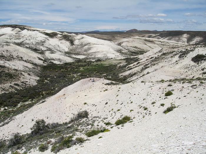 发现最古老茄科植物化石 阿根廷出土的墨西哥酸浆化石距今5200万年