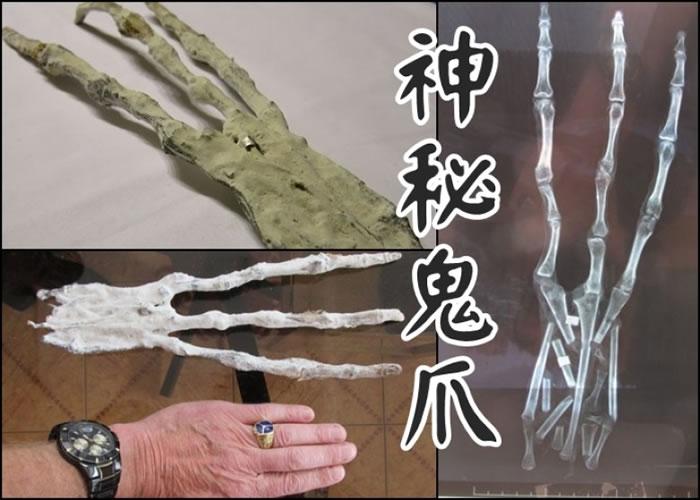 """""""鬼爪""""比人类手掌长。"""