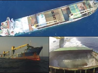"""美国炸沉""""挪威海怪""""货船 变做墨西哥湾珊瑚礁"""