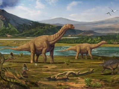浙江新发现一批恐龙新物种和众多国内外首次发现的化石
