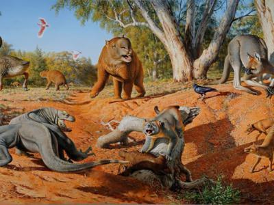 人类的捕猎更有可能是澳大利亚史前大型动物灭绝的直接原因