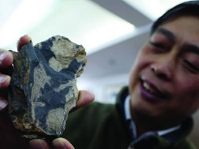 南京古生物学家在浙江安吉发现世界上最丰富的海绵动物群化石