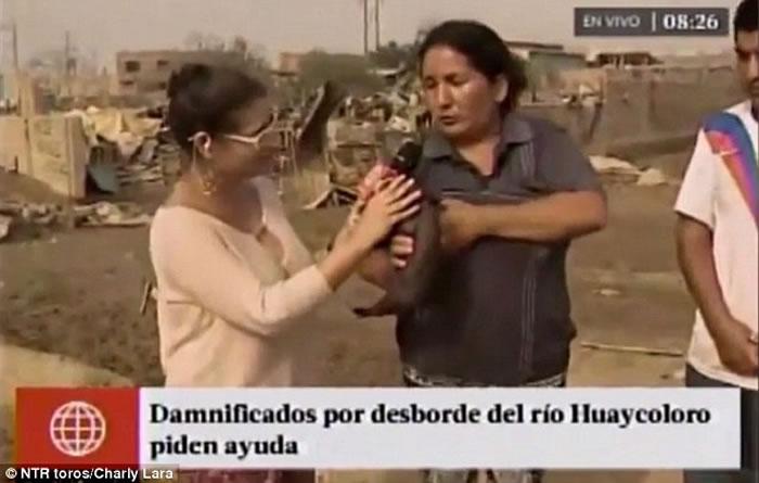 秘鲁妇人接受采访时突然掀衣给猪喂奶 记者当场哑口无言
