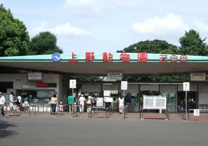 上野动物园暂停展示雀鸟。