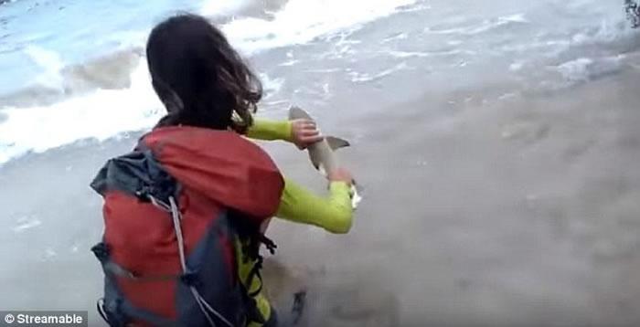 巴西海洋国家公园情侣海边捞鲨鱼幼崽自拍