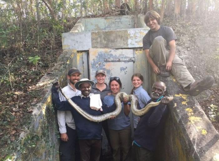 伊鲁拉族人或许是世界上最好的捕蛇家。
