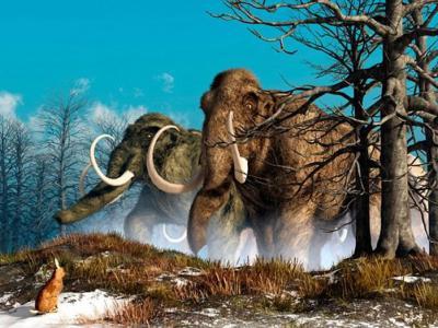 美国哈佛大学研究团队:两年内制造出内含4500年前绝迹长毛象基因的混种象胚胎