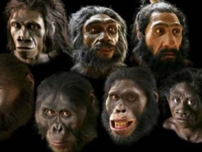 中国科学家公布古人类学研究新动态或证明人类祖先多地区起源