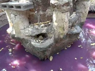 泰国呵叻府井水突然变成紫色 高僧显灵所致?