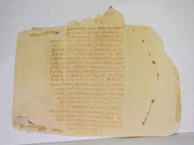 纳粹德国拉文斯布吕克集中营波兰女囚犯用尿液作隐形墨水书写的信件公开