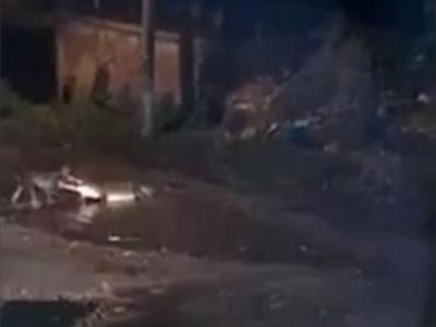 墨西哥男子意图捕获河边鳄鱼 狗扑出帮忙反遭叼走
