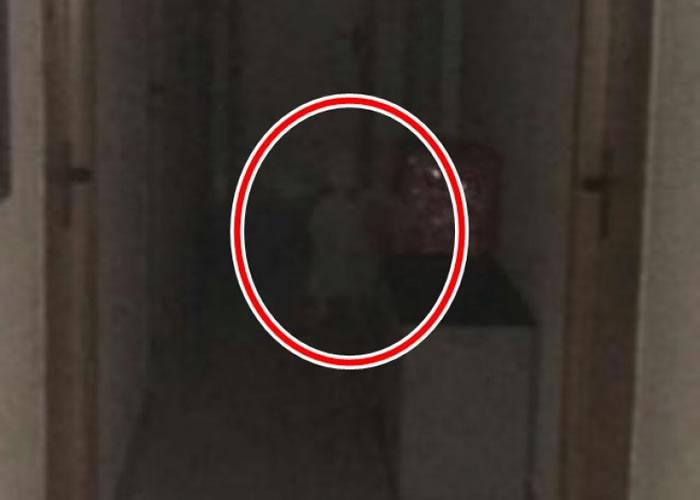 男子从照片发现有小童(红圈)深夜现身市政厅办公室。