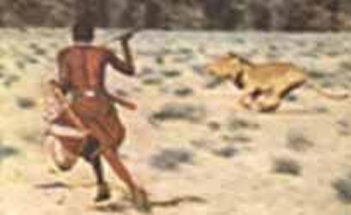 视频:凶猛非洲马赛人猎杀狮子 三个马赛人就吓跑一群狮子