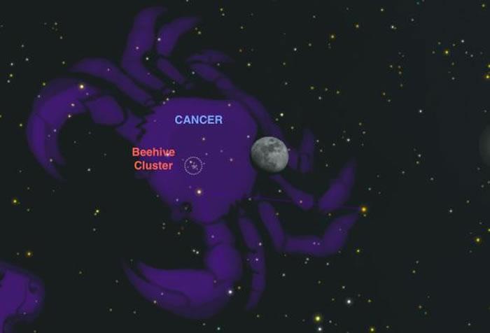 蜂巢星团(Beehive Cluster)大约是由一千颗恒星所组成的,没有光害的星空下,用肉眼就可以看见。 SKYCHART BY A. FAZEKAS, SK