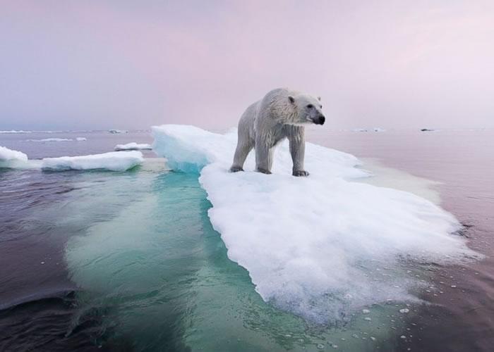 全球暖化加剧北极地区融冰,海平面上升。