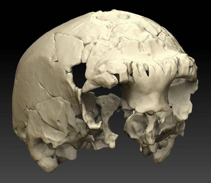 葡萄牙南部阿罗埃拉的岩石中发现40多万年前人类头骨化石