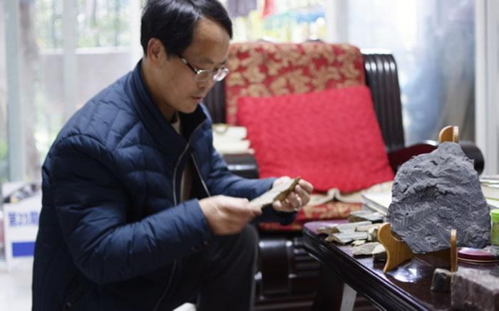 """""""化石猎人""""藏身西南大学图书馆"""