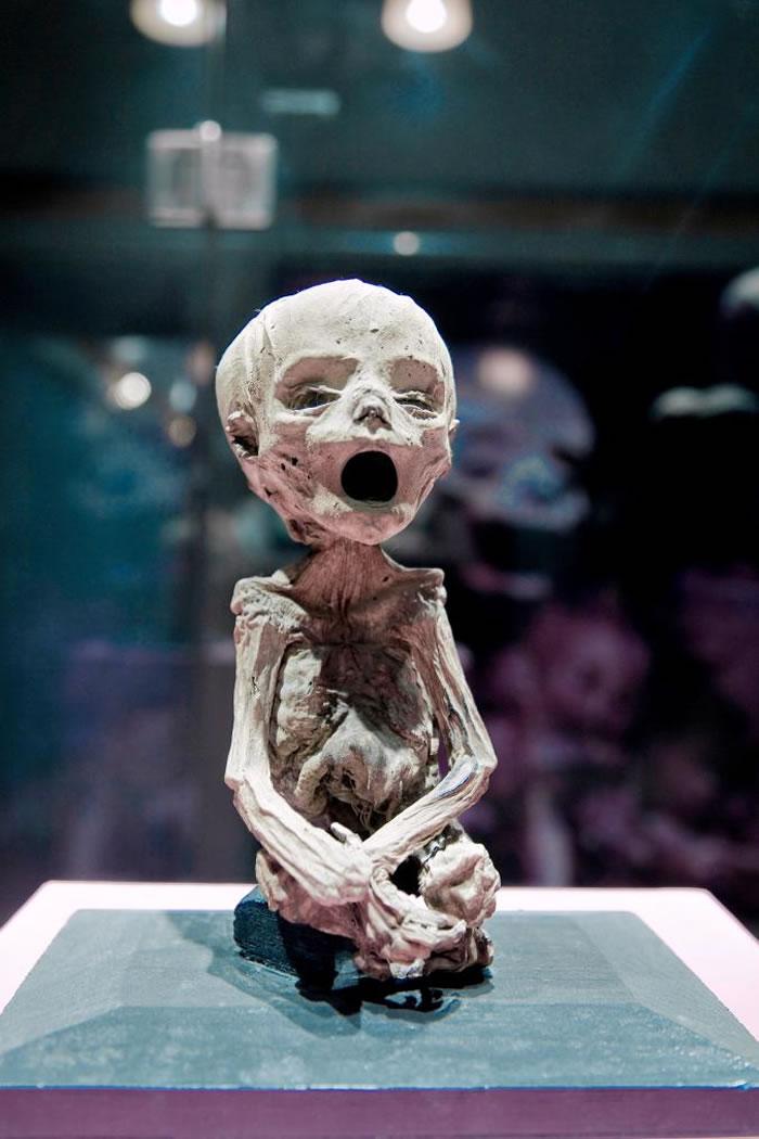 木乃伊博物馆是墨西哥的热门景点之一,图中为博物馆展示的幼儿木乃伊。 PHOTOGRAPH BY DANITA DELIMONT, GETTY IMAGES