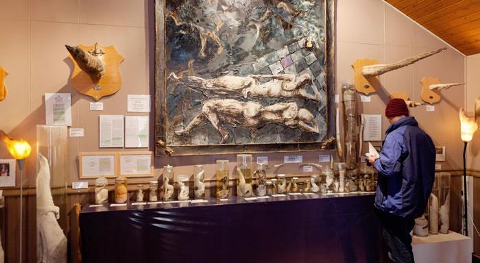 雄性生殖器官博物馆展示了超过215个阴茎和雄性生殖器官,来自各种陆地与海洋生物。 PHOTOGRAPH BY ARCTIC IMAGES/ALAMY STOCK