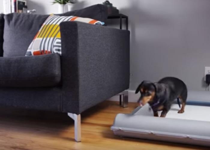 狗主只需按一下开关,便盆内置的微型静音发电机就会转动滚轴。