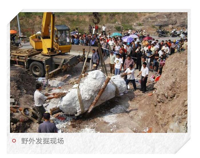中国东阳龙:一条以浙江东阳命名的恐龙