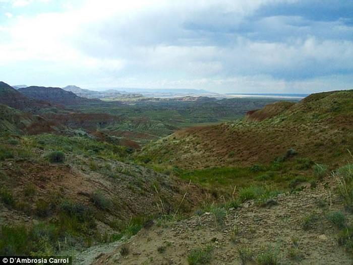 5600万年前地球突然升温 始祖马体型随之缩小