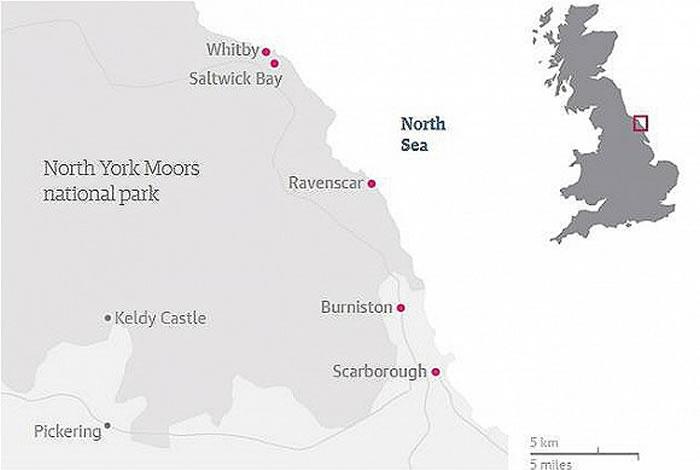 这条引人注目的海岸线正是化石勘探者的沃土,因为在这片海岸上,1.6亿年的恐龙化石(以及恐龙脚印)都很常见。