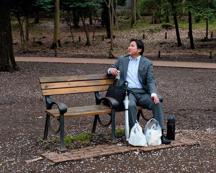 落樱布满东京最珍贵的绿地:井之头恩赐公园。 Photograph by Albert Bonsfills