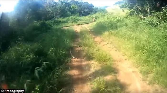 印尼班达亚齐森林惊现疑似哈比人的神秘小矮人 摩托车手吓得跌倒在地