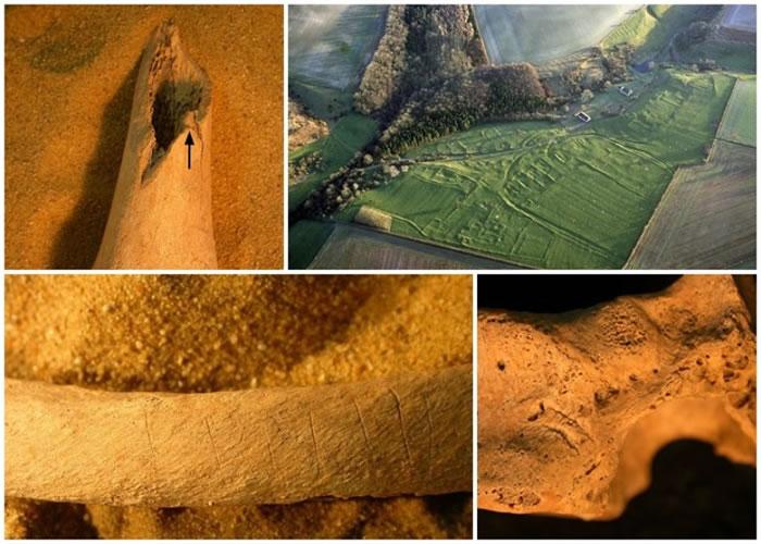 骸骨上发现多处被人用刀切割的痕迹。
