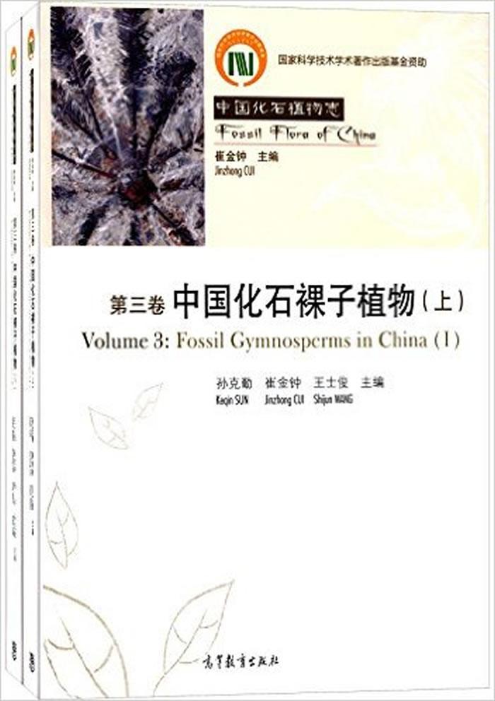 《中国化石裸子植物》追溯中国古植物的演化