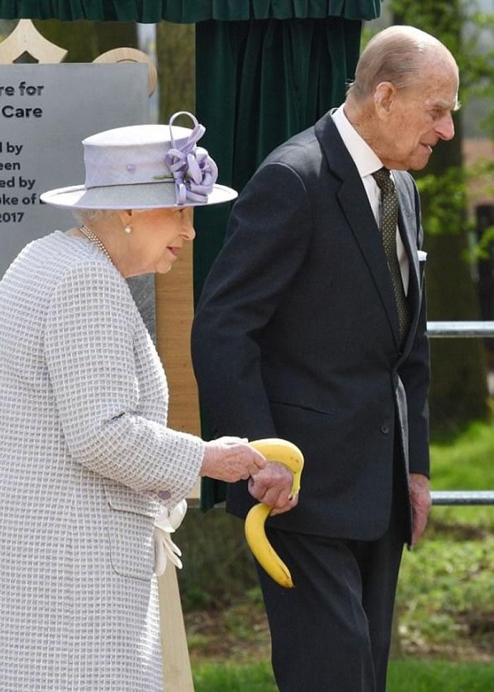 逗大象开心,当然是用香蕉吧!