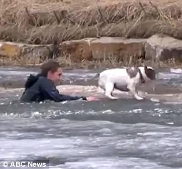 人狗情未了:加拿大男子扑冰湖救爱犬