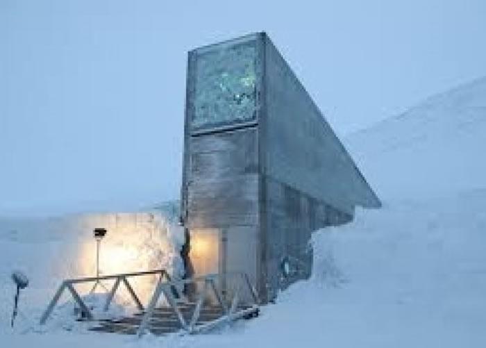 """""""末日图书馆""""位于北极群岛斯瓦巴的冰天雪地。"""