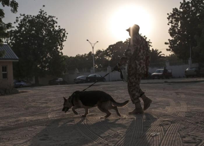 一名尼日利亚士兵拖狗巡逻。(资料图片)