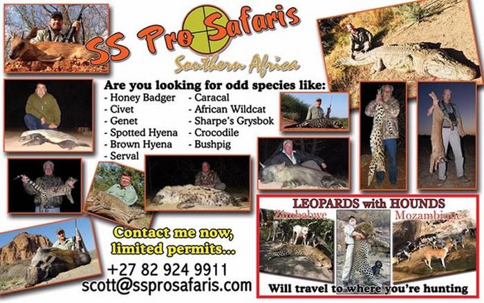 齐尔狩猎公司的宣传海报。