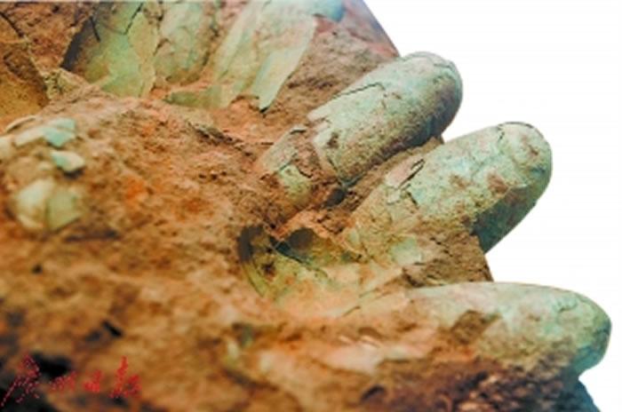 30年前,南海桂城平洲发现的恐龙蛋化石。