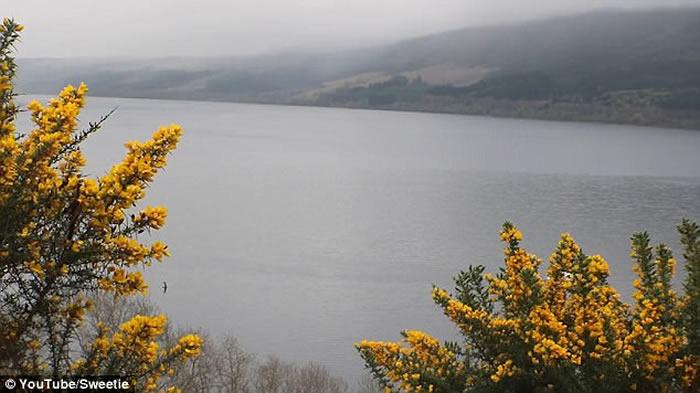 神秘黑影滑过湖面 尼斯湖水怪又再出现