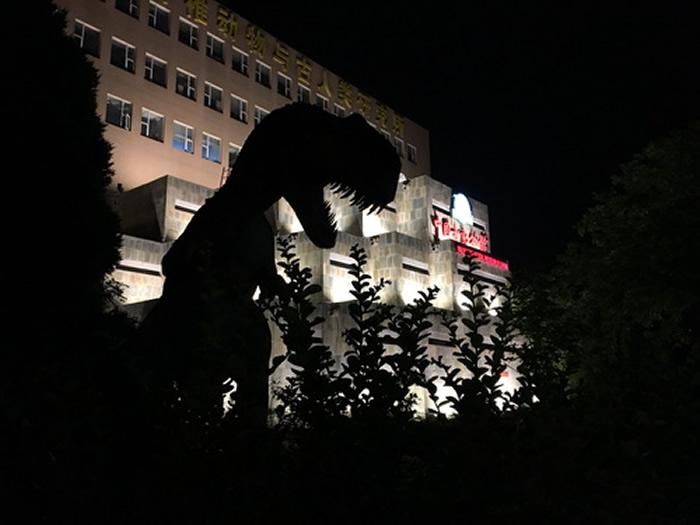 """全国科技周夜场活动""""科学之夜""""在中国古动物馆举行"""