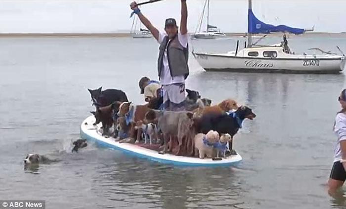 澳洲犬只训练员Chris de Aboitiz破世界纪录 与25只狗登冲浪板