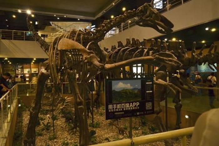 逛中国古动物馆时可以随时用手机百度APP召唤AR恐龙