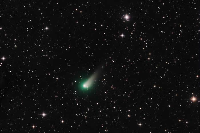 3月26日拍摄的强生彗星,显现出一条尘埃尾,当时它正朝着地球靠近。PHOTOGRAPH BY JOSÉ J. CHAMBÓ