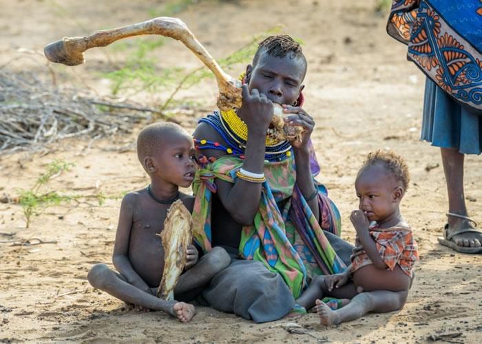 东非多个国家近月陷入严重粮荒。