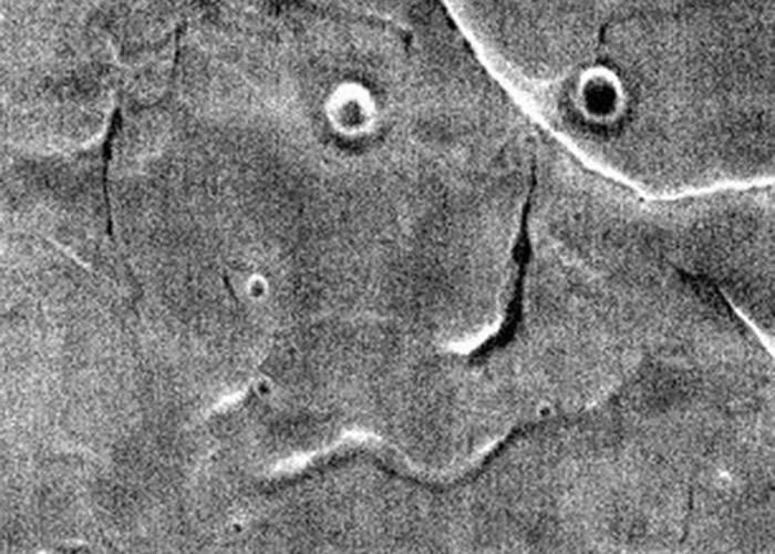 美国火星漫游者号图片首曝光 似盯着人的脸?