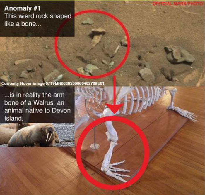 网民质疑美国NASA每次发放的火星照片都是在加拿大德文岛上拍摄