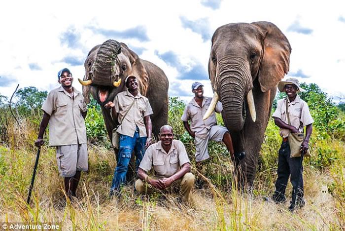50岁野生动物训兽师Enock Kufandada